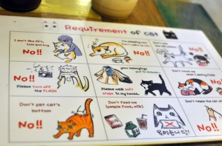 cat-cafe-rules-1024x680