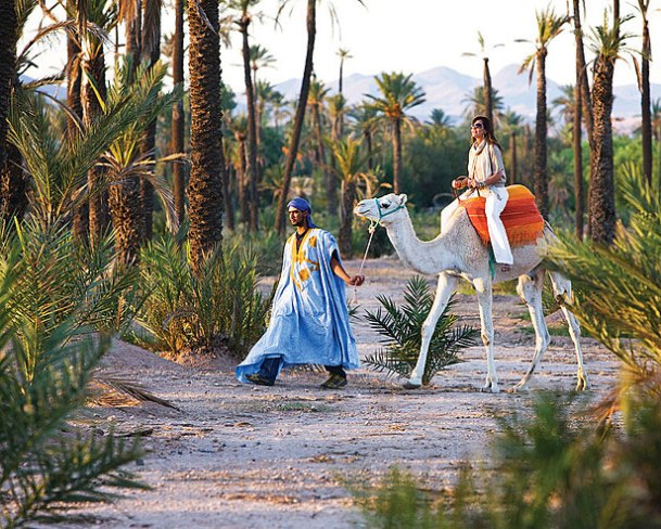 camel-ride-in-morocco