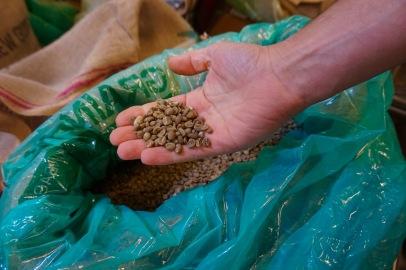 savannah-coffee-roasters-green-bean